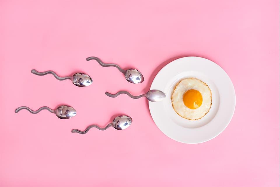 Fertility-Superfoods